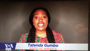 Tatenda Gumbo of Voice of America
